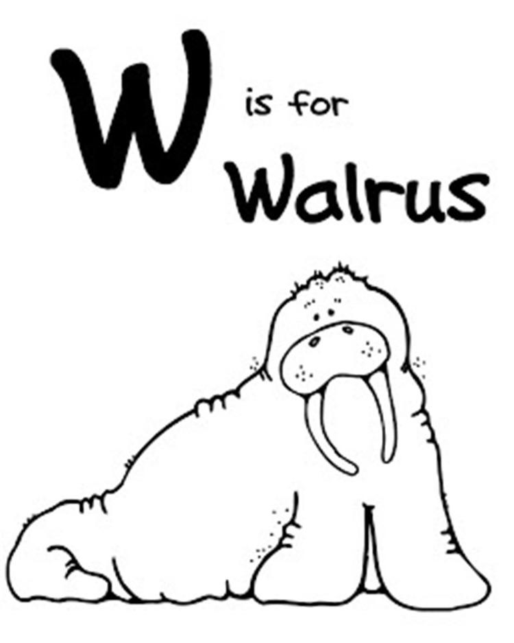 W For Walrus Free Alphabet Coloring Pages