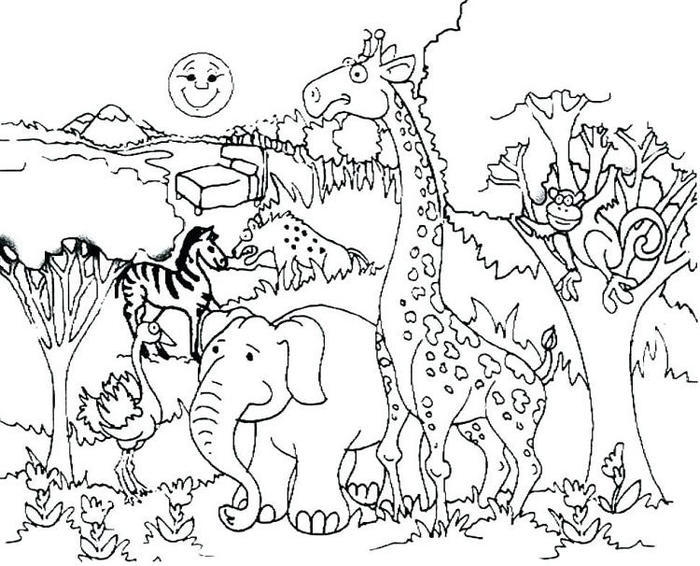 Wildlife Forest Animal Coloring Pages