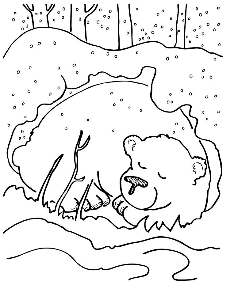 Winter Bear Coloring Pages