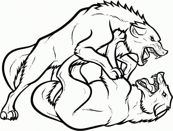 Wolf Coloring Pages Two Wolves Fighting