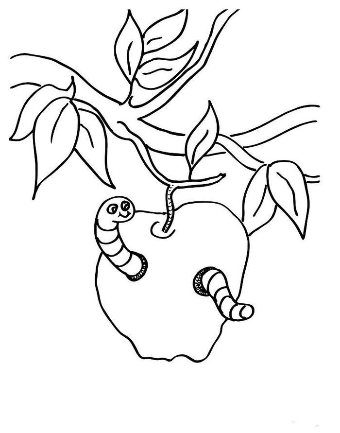 Worm In An Apple Coloring Pages