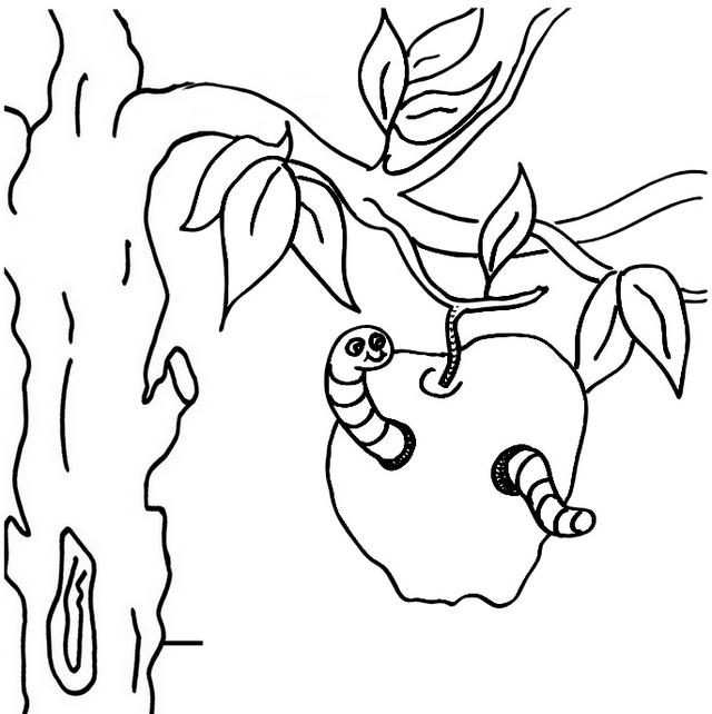 Worms In Apple Tree Coloring Page