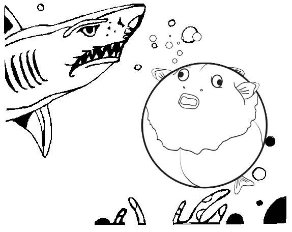 Yellow Puffer Fish Coloring Page Of Fugu