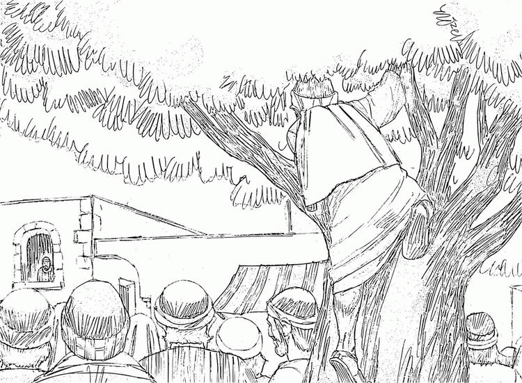 Zacchaeus Coloring Pages Bible