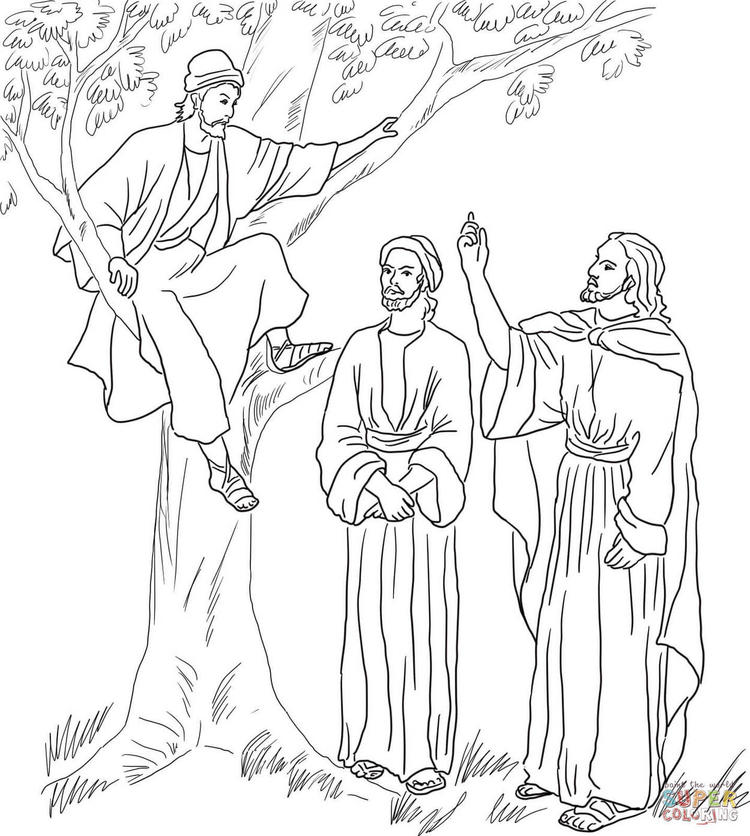 Zacchaeus Tree Coloring Page Printable