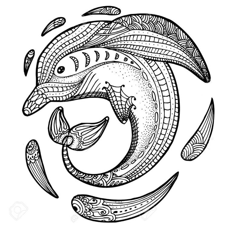 Zentangle Dolphin Coloring Picture