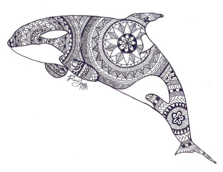 Zentangle Dolphin Drawing To Print