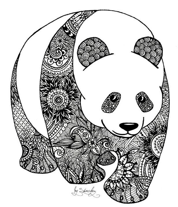 Zentangle Panda Coloring Book