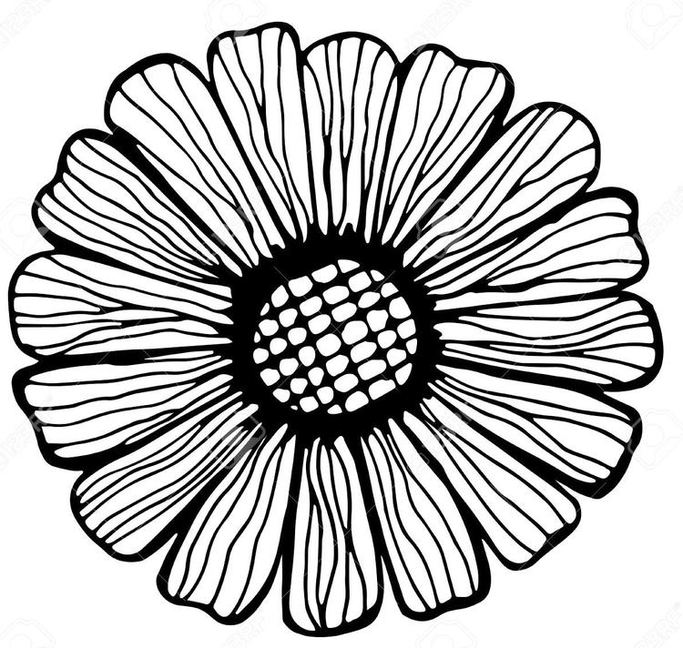 Zentangle Sunflower Coloring Book