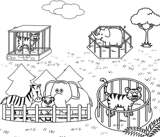 Zoo Animal Cage Coloring Pages