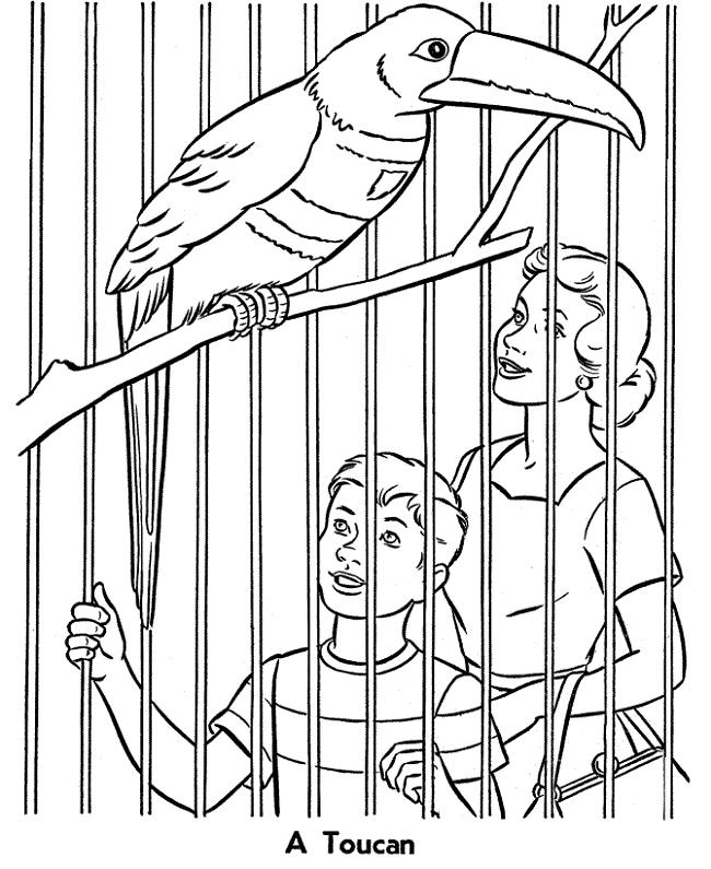 Zoo Animals In Cages Coloring Pages
