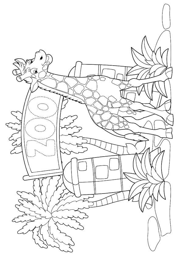 Zoo Coloring Pages Printable For Kids