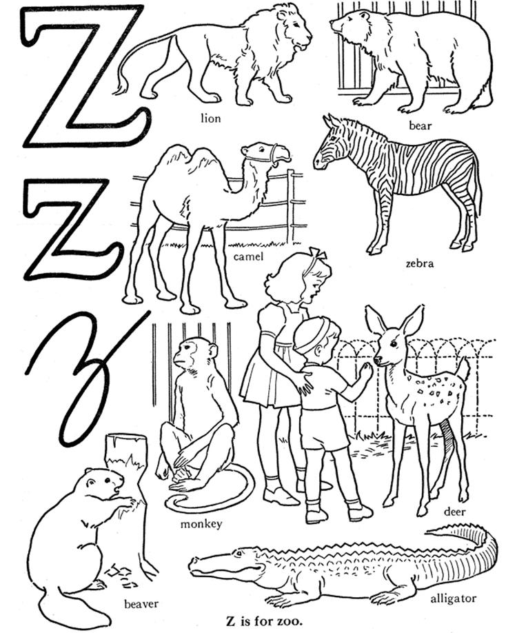 Zoo Coloring Pages Z Is For Zoo