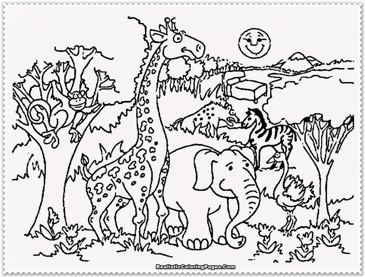 Zoo Preschool Coloring Pages Animals